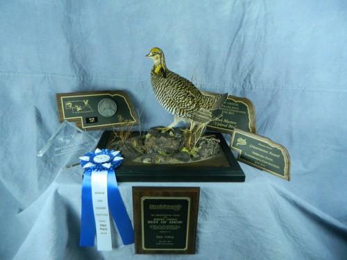Award-winning prairie chicken taxidermist